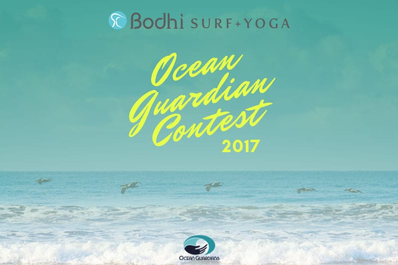 2017 Ocean Guardian Contest over